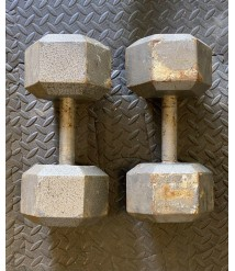 60 Lbs Dumbbell Set of 2 Hex Cast Iron Gray (120 Lbs Total)